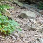 This large boulder was moved 2 feet to the right to clear the trail.