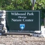 Wildwood Nature Center Logo
